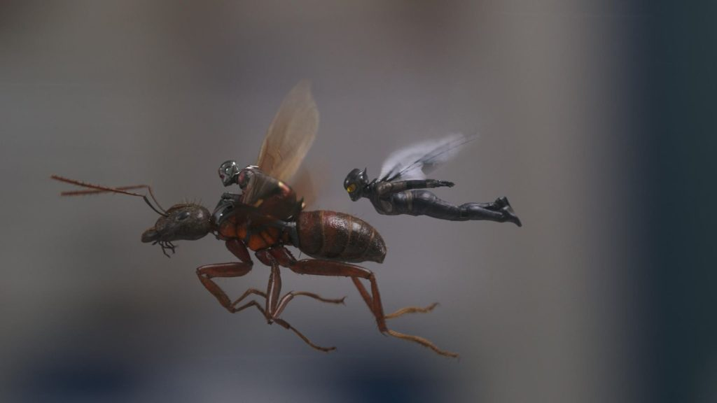 Ant-Man & The Wasp fly ant